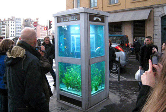 aquarium_phone_booth_front3
